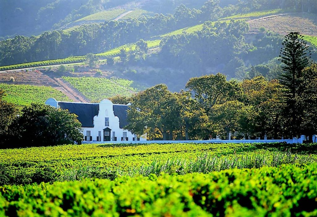 The Cape Winelands of Paarl, Western Cape, South Africa