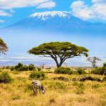 Mount Kilimanjaro Africa's Tallest Mountain